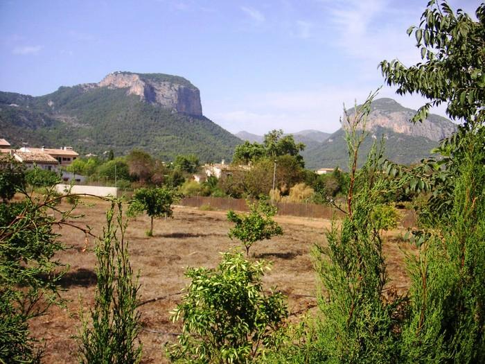 El paisaje arrollador de Alaró