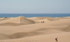 El paisaje dunar de Maspalomas