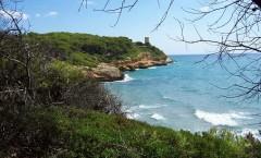Punta-de-la-Mora