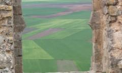 Paisaje de contrastes en Soria