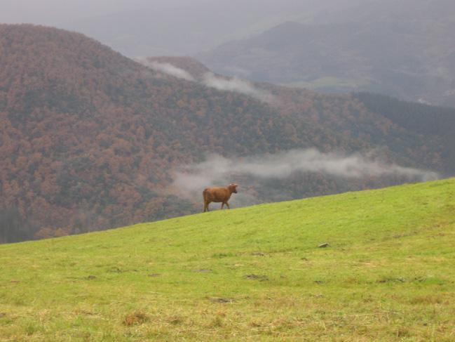 Cahecho: El Mirador de Liébana