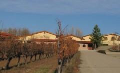 La Horra: la villa del buen vino