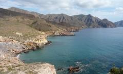 Cabo Tiñoso, tesoros en el fondo del mar