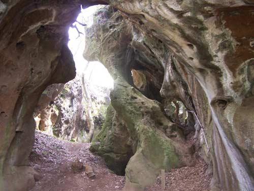As Covas da Andía y el bosque encantado