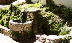 Cuevas del Becerro